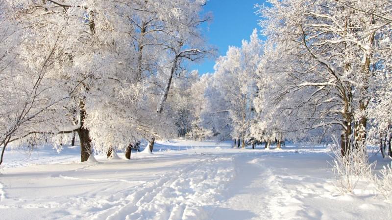 Погода в селе троицком беляевский район
