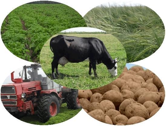 осуществляется применением российский производитель сельхозяйского оборудывания более теплое белье