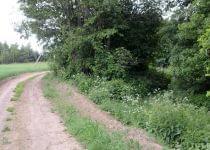 К хутору из трех домов в Молодечненском районе собираются строить четвертую дорогу. Фото с сайта auto.tut.by