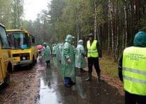 В Беловежской пуще потерявшегося мальчика седьмые сутки ищут тысячи людей. Фото с сайта news.tut.by